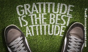 GratitudeIs A Strength You Can Not Really Live Without!