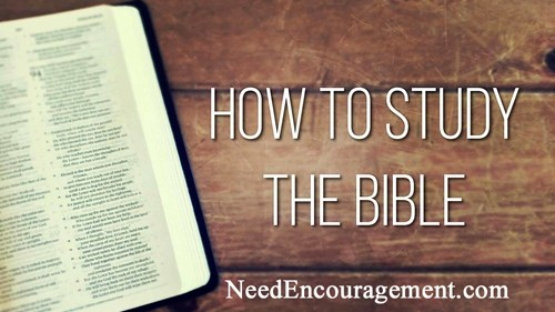 How to read the Bible and gain wisdom?