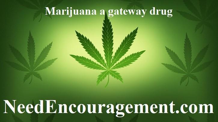 Marijuana does great damage