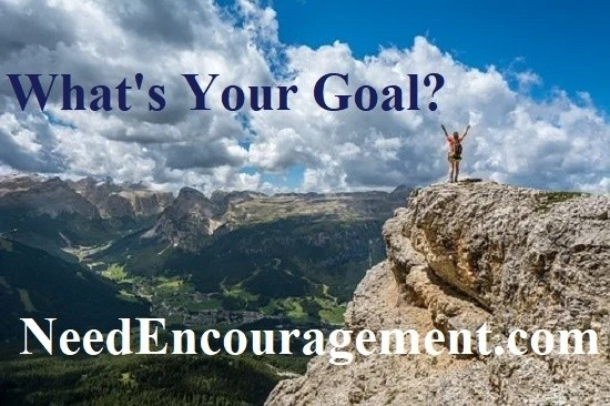 Goal setting information here!