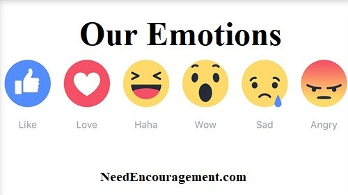 How many emotions do you have?